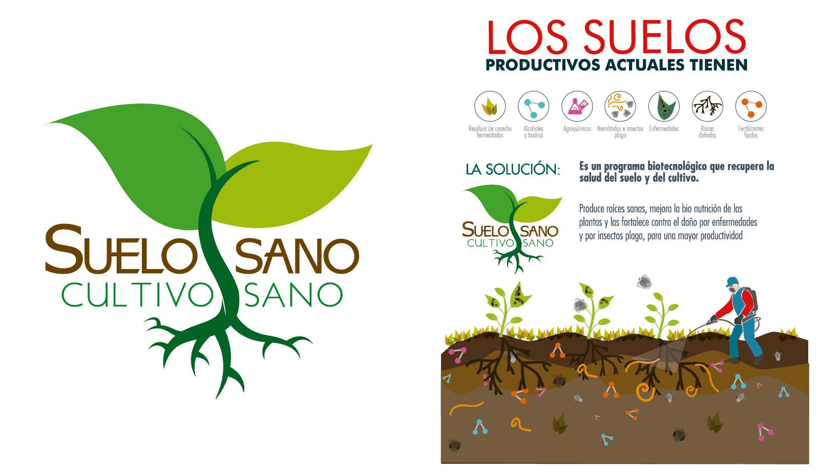 Suelo sano cultivo sano for Que es la clausula suelo de los bancos